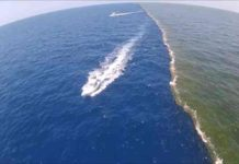 दो विशाल समुद्र