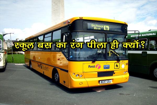 स्कूल की बसों का रंग पीला ही क्यों होता है