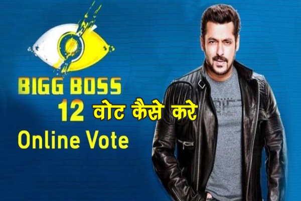 Bigg Boss 13 में Vote कैसे करे