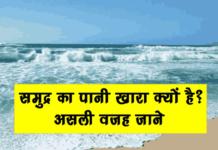 समुद्र का पानी खारा क्यों होता है असली वजह जाने