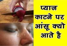 प्याज काटते समय आंखों में आंसू क्यों आते हैं