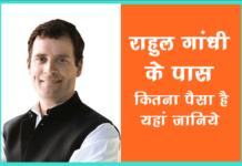 राहुल गांधी के पास कितनी संपत्ति है