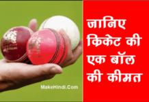 क्रिकेट बॉल की कीमत कितनी होती है