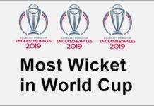 वर्ल्ड कप में सबसे ज्यादा विकेट 2019