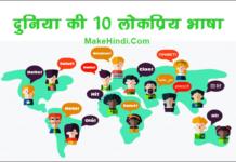 दुनिया में सबसे ज्यादा बोली जाने वाली भाषा