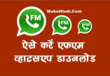FM WhatsApp डाउनलोड कैसे करें