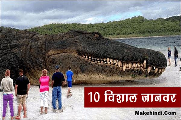 दुनिया का सबसे बड़ा जानवर कौन सा है